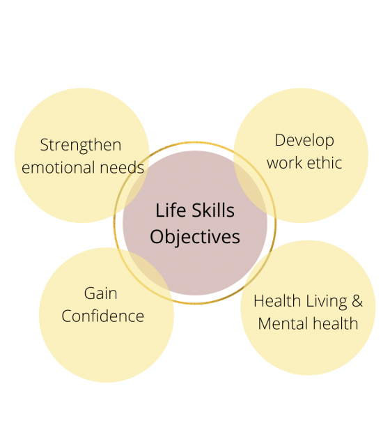 Diagram showing the objectives of life skills education